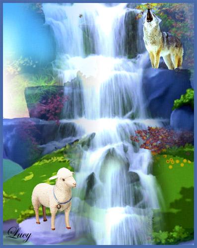 Il lupo e l 39 agnello for Disegni di lupi da colorare